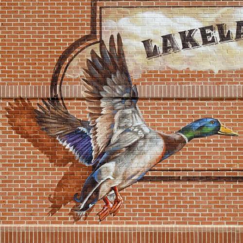 Murals by Anat Ronen seen at Lakeland Village Center, Cypress - Lakeland ducks