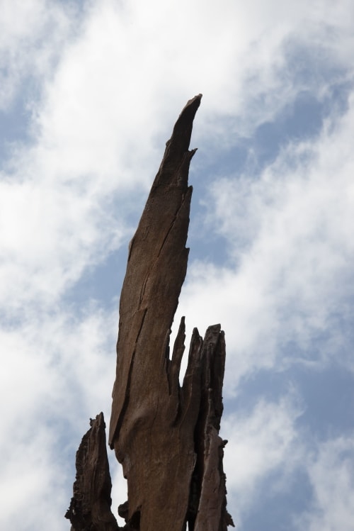 "Public Sculptures by John Ruppert seen at Ladew Topiary Gardens, Monkton - Cherry Tree Strike   39°36'24.3""N  76°42'54.4""W / Lightning Strike Series"