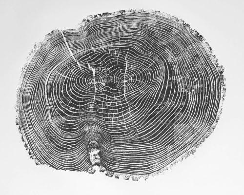Tree Ring Print of Ash, 24x36 inches | Art & Wall Decor by Erik Linton