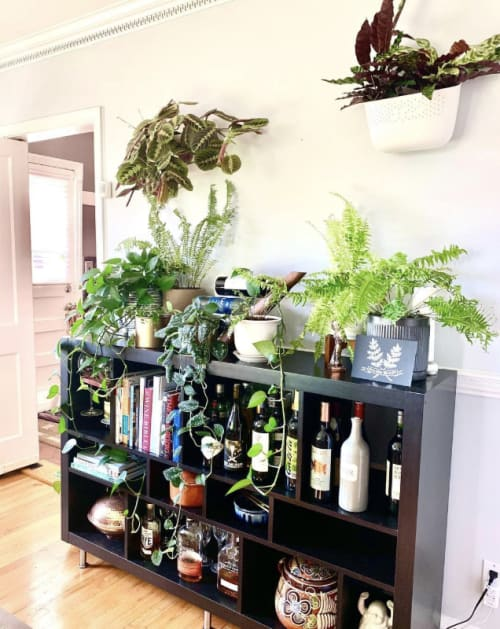 "Art & Wall Decor by Close Call Studio seen at Private Residence, Baltimore - ""I'm a fern believer"""