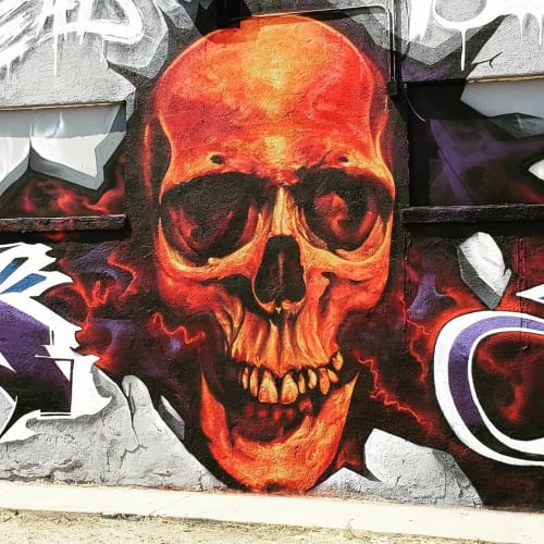 Street Murals by SRIL ART seen at Denver, Denver - Skull
