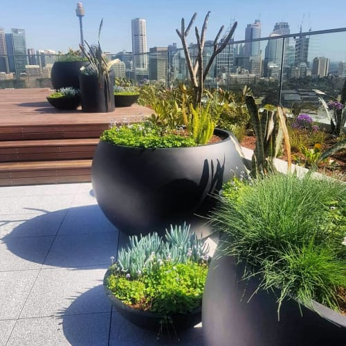 Vases & Vessels by The Balcony Garden seen at OMNIA, Potts Point - Willow Range Muffin Top