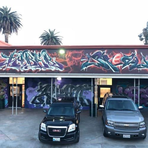 Street Murals by SRIL ART seen at Long Beach, Long Beach - Freestyle Graffiti