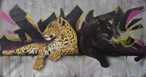 Dave Baranes - Art and Street Murals