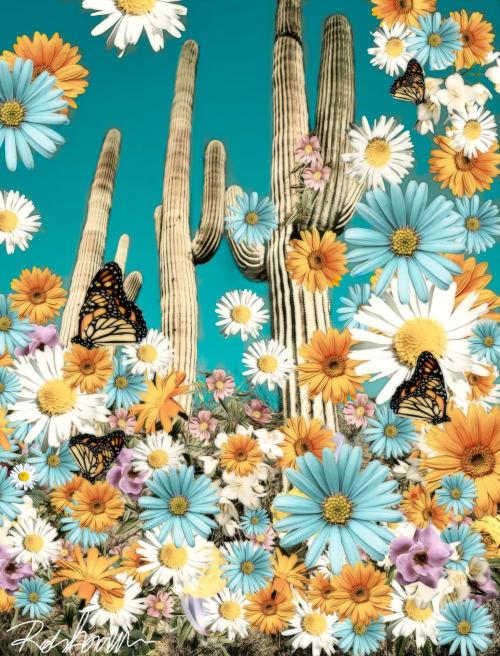 Photography by Robin Jorgensen seen at Dallas, Dallas - Desert Blooms