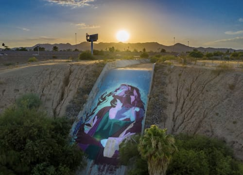 Street Murals by Clyde seen at Private Residence, Tempe - Hannah
