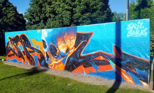 Street Murals by SRIL ART seen at Redmond, Redmond - Graffiti Wall