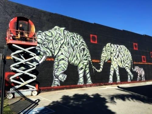 Jason Ostro (Gabba Gallery) - Murals and Street Murals