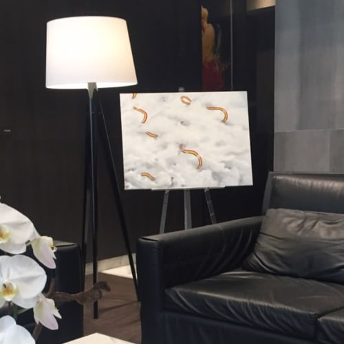 Paintings by Marie-Judith Jean-Louis seen at Private Residence, Toronto - Reflection 1