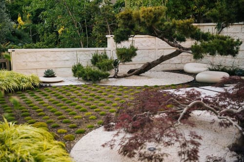 Plants & Landscape by Zeterre Landscape Architecture seen at Private Residence, Palo Alto - Asian-Inspired Palo Alto Bungalow