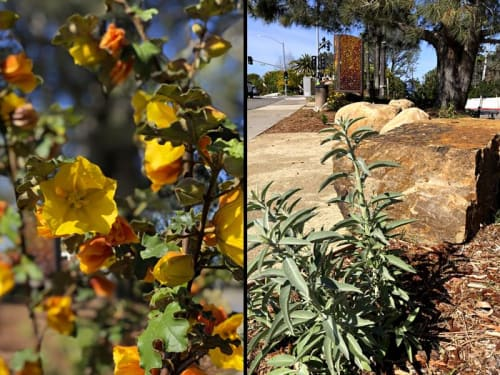Public Sculptures by Betsy K. Schulz seen at Solana Beach, Solana Beach - Firewall: Solana Beach Fire Station FireWall and Landscape