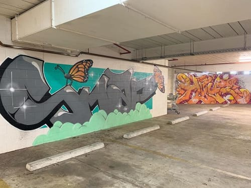 Murals by Ms Snaps seen at Palmerston Shopping Centre, Palmerston City - Carpark Burners