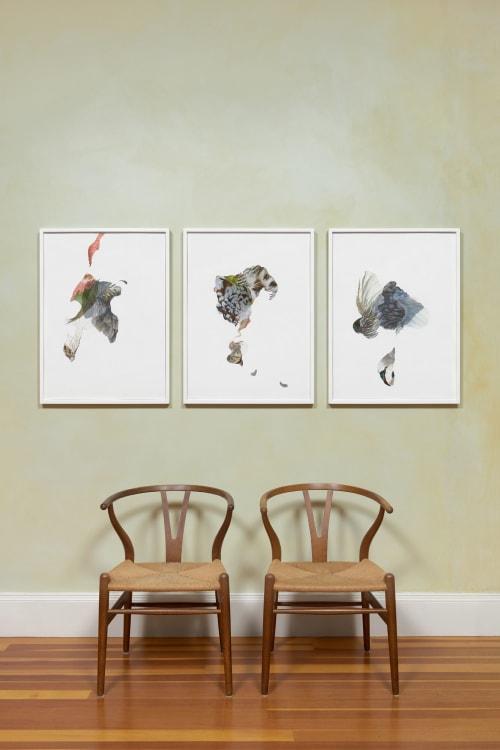 Art & Wall Decor by Lisa Mccutcheon seen at San Francisco, San Francisco - Feathers Series