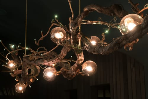 Chandeliers by James Russ seen at Tantalus Estate, Auckland - Tantalus