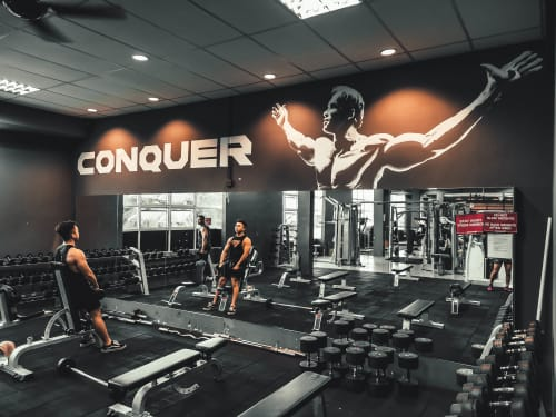 Murals by CreationOfTwo_Co2 seen at Vo2 Energym, Muar - Fitness Gym Murals | Arnold Schwarzenegger Figure by Co2