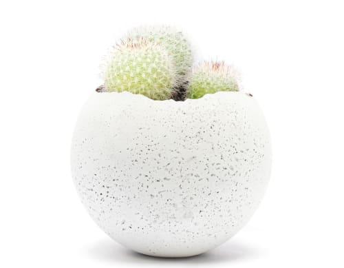 Plants & Flowers by Household by KONZUK seen at Creator's Studio - Orbis Concrete Vessels - L