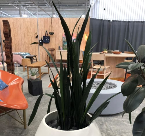 Chairs by Galanter & Jones seen at Bay Area Made x Wescover 2019 Design Showcase, Alameda - Helios Metreo