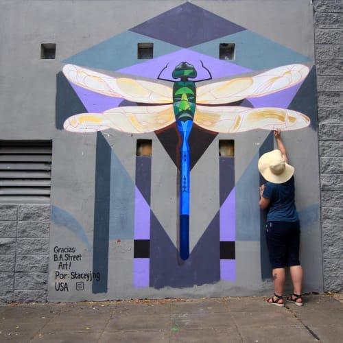 "Street Murals by Stacey Williams-Ng seen at Coghlan, Coghlan - ""La Libelula,"" mural in BA Street Art program"