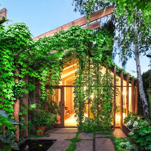 Plants & Landscape by Eckersley Garden Architecture seen at Private Residence, Melbourne, Melbourne - Garden Landscape