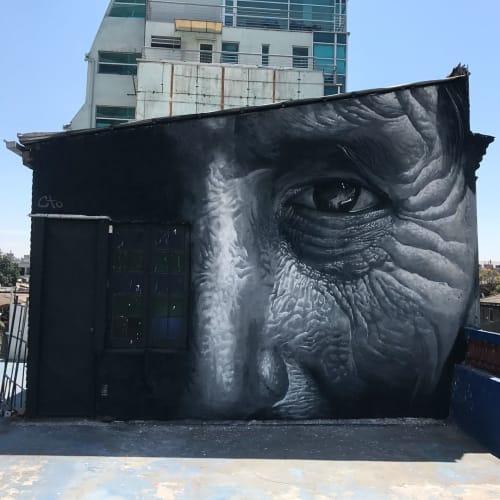 Murals by Pete Cto seen at patio bella vista, Santiago - 'Juntos'