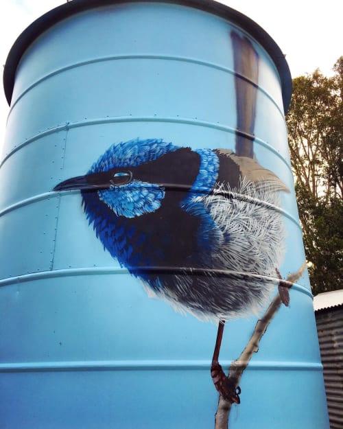 Street Murals by Geoffrey Carran seen at Langkoop, Langkoop - Grain Silo Art