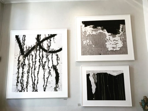 Art Curation by Christina Stafford of Stafford Gallery seen at Stafford Gallery, Healdsburg - Black and White Large Format Photography