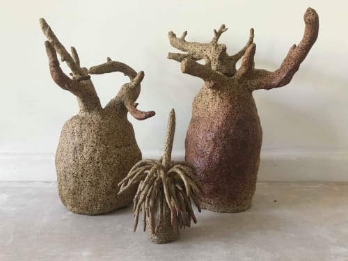 Sculptures by Ceramics by Hannah seen at Private Residence, Perth - Australian Boab and Grass Trees