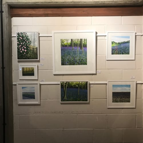 Surrey Art Box Exhibition 2019 | Paintings by Becca Clegg | Denbies Wine Estate in Dorking