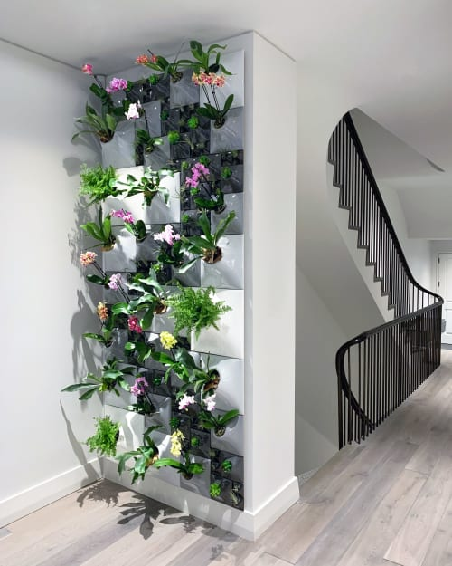 Vases & Vessels by Pandemic Design Studio seen at Private Residence, New York - Sculptural living wall - The Waverly Node Greenwall