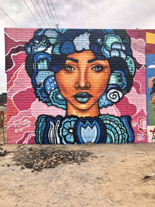 Street Murals by Alloyius Mcilwaine Art seen at 1015 N 7th St, Phoenix - Muse Collab with Nyla Lee