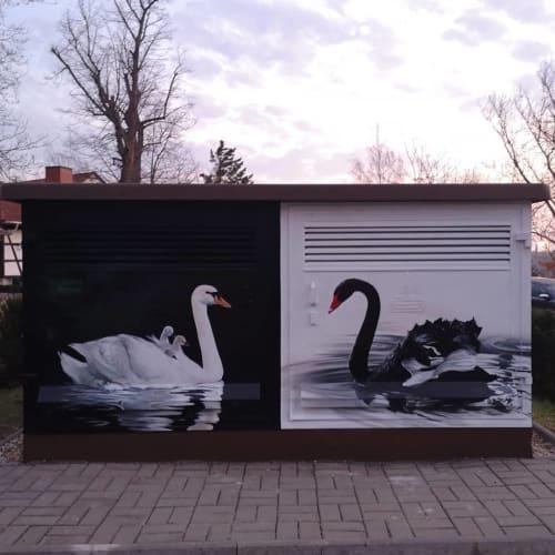 Street Murals by TASSO seen at Schwanefelder Straße, Meerane - Swan Mural