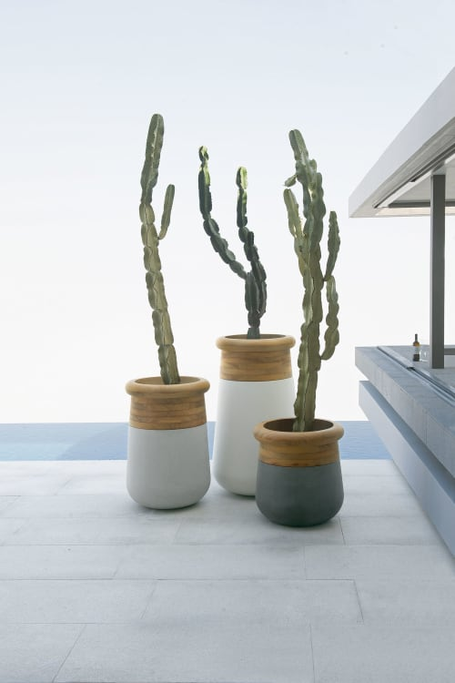 Furniture by Indigenus seen at Private Residence, Cape Town - Soma Planters - designed by Laurie Wiid van Heerden