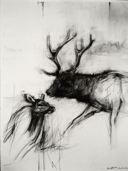 Paintings by April Coppini seen at Private Residence, Portland - American Elk, Bull And Calf