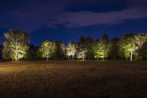 Moonlight Design Ltd - Lighting Design and Renovation