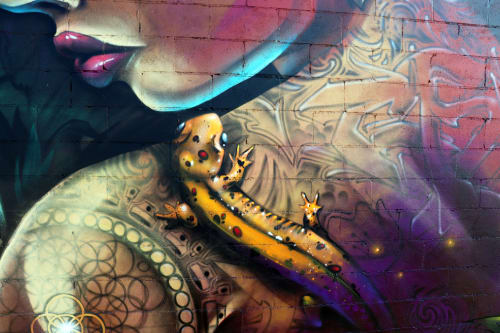 "Street Murals by Jared Goulette | The Color Wizard seen at Waterfront, Burlington - Above The Radar Graffiti Festival; Mural titled ""Mother Natures Warrior"" - exterior Mural"