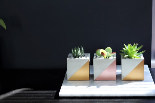 """Plants & Flowers by Mind The Minimal seen at """"Private Residence - Vancouver, BC"""", Vancouver - Cube Concrete Planter"""