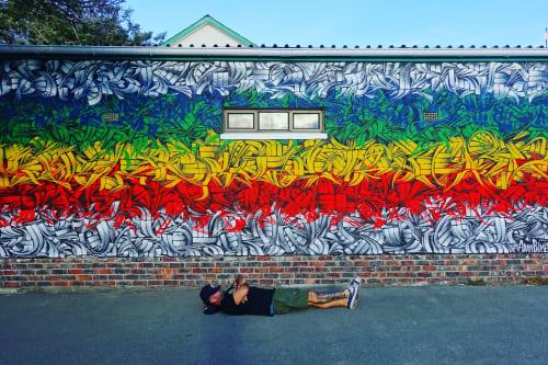 Street Murals by Adam Palmeter seen at Cape Town, Cape Town - Mural