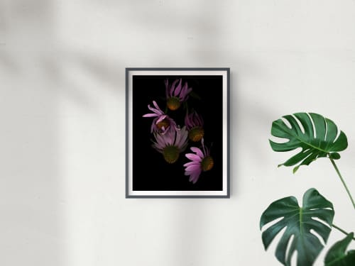 Photography by Studio Rita Patel seen at Creator's Studio, Rochester - Floral Portrait: Floating Echinacea