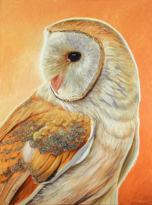Paintings by Ebony Bennett - Birdwood Illustrations seen at Aarwun Gallery, Canberra - Bella - Barn Owl