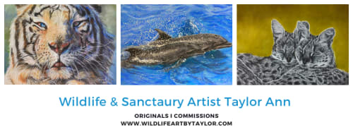 Taylor Ann - Paintings and Art