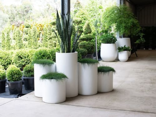 Vases & Vessels by The Balcony Garden seen at Exotic Nurseries & Landscaping, Dural - Loob