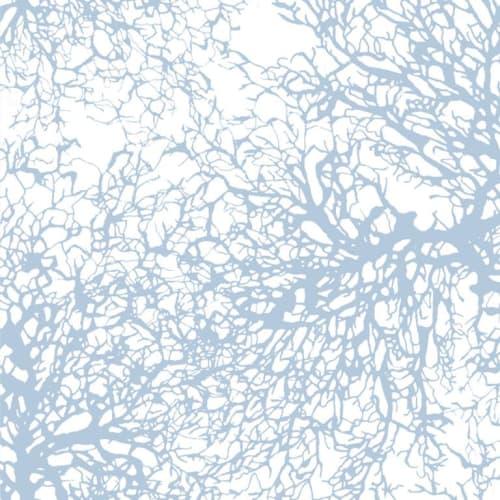 Wallpaper by Jill Malek Wallpaper - Gorgonian in Ocean