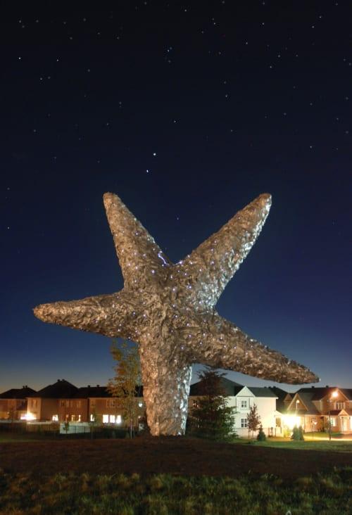 Public Sculptures by Don Maynard Studios seen at Half Moon Bay Road, Ottawa - Fallen Star