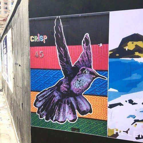 Street Murals by CRISP seen at Sydney, Sydney - Hummingbird