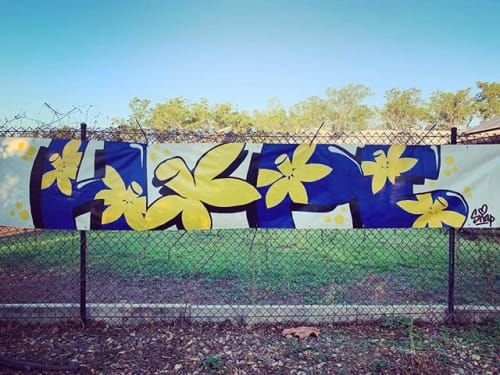 Murals by Ms Snaps seen at Casuarina Square, Casuarina - Donation for Cancer  Council NT