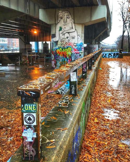 "Street Murals by Ben Tolman seen at Washington, Washington - ""Twelve Normal Eyes"" Mural"
