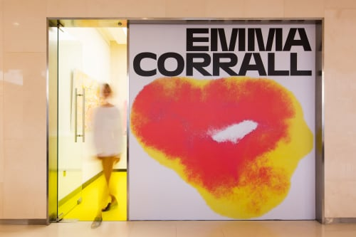 Emma Corrall - Planters & Vases and Paintings
