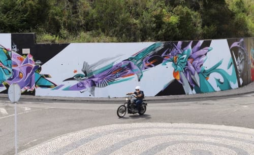 André Acer - Murals and Street Murals