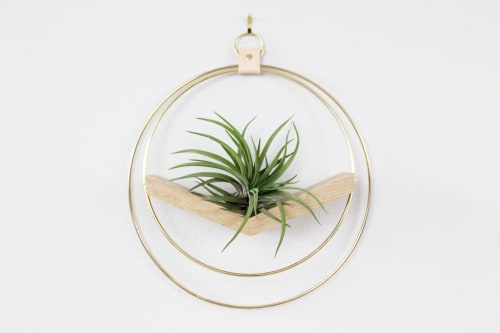 Vases & Vessels by Braid & Wood Design Studio seen at Private Residence - Modern Air Plant Hanger