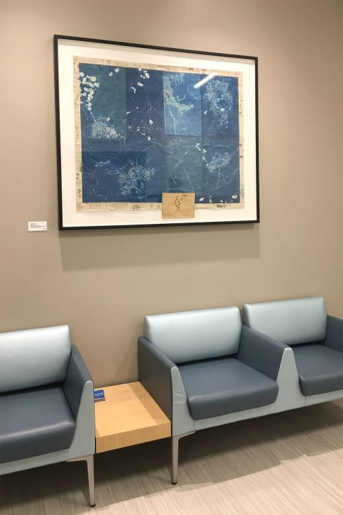 Paintings by Ann Holsberry seen at UCSF Medical Center at Mission Bay, San Francisco - History of Flowers